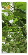 Leafy Vines Beach Towel
