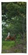 Leaping White-tail  Beach Towel