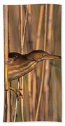 Least Bittern Beach Towel
