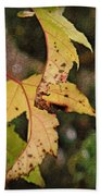 Leaves And Autumn Beach Towel