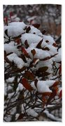 Leaves And Powery Snow Beach Towel