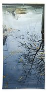 Leaves And Reeds On Tree Reflection Beach Towel