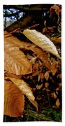 Leaves In Late Autumn Beach Towel