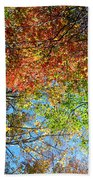 Leaves Of All Colors Beach Towel