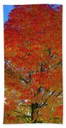 Leaves Of Fire Beach Towel
