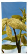 Leaves Of Gold Beach Towel