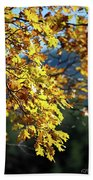 Leaves On Fire Beach Towel