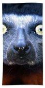Lemur Glare Beach Towel