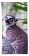 Lemur's Gaze Beach Towel
