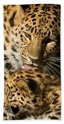Leopard Cub Love Beach Towel