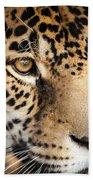 Leopard Face Beach Towel by John Wadleigh