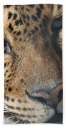 Leopard Face Beach Towel