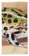 Leopard Frog No 1 Beach Towel
