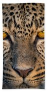 Leopard Panthera Pardus, Ndutu Beach Towel