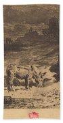 Les Anes De La Butte-aux-cailles (donkeys At La Butte-aux-cailles) Beach Towel