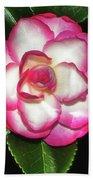 Leslie Ann - Sasanqua Camellia 007 Beach Towel