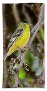 Lesser Goldfinch H57 Beach Towel