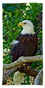 Let Freedom Ring Beach Towel