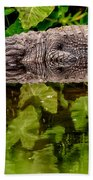 Let Sleeping Gators Lie Beach Towel