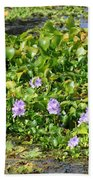 Lettuce Lake Flowers Beach Towel