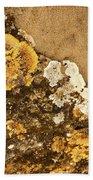 Lichen On The Piran Walls Beach Towel
