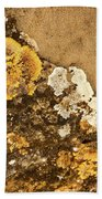 Lichen On The Piran Walls Beach Sheet