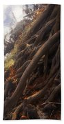 Life By The River Beach Towel by David Lee Thompson