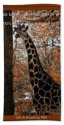 Life Is Standing Tall Beach Towel