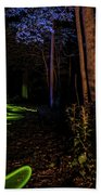 Lighit Painted Forest Scene Beach Towel