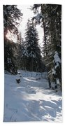 Light And Shadow On A Snowy Landscape Beach Towel