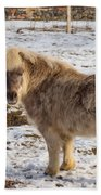 Light Brown Pony Beach Towel
