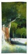 Light In The Forest Beach Sheet