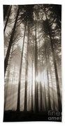 Light Through Forest Beach Towel