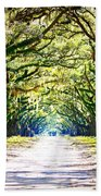 Light Through Live Oak Lane Beach Towel