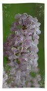 Lilac Dreams With Corner Decorations Beach Towel