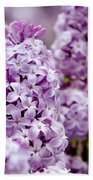 Lilac Beach Towel