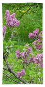 Lilac In The Spring Meadow Beach Towel