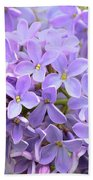 Lilacs-lavender Lovely  Beach Towel