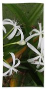 Lilies Of The Swamp Beach Towel