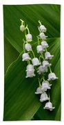 Lilies Of The Valley Beach Towel