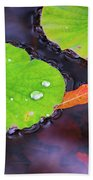 Lillies On Water Beach Towel