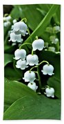 Lilly Of The Valley Flowers Beach Towel by Jeremy Hayden