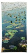 Lilly Pad In Pond  Beach Towel