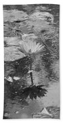 Lilly Pond Beach Towel