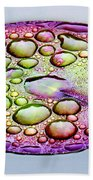 Lillypad Beach Towel