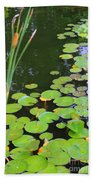 Lillypads And Cattails Beach Towel