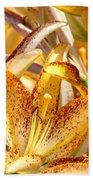 Lily Flower Garden Art Prints Canvas Floral Lilies Baslee Troutman Beach Towel