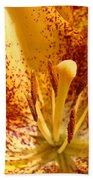 Lily Flower Macro Orange Lilies Floral Art Print Baslee Troutman Beach Towel