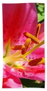 Lily Flower Pink Lilies Giclee Art Prints Baslee Troutman Beach Towel