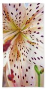 Lily Flower White Lilies Art Prints Baslee Troutman Beach Towel